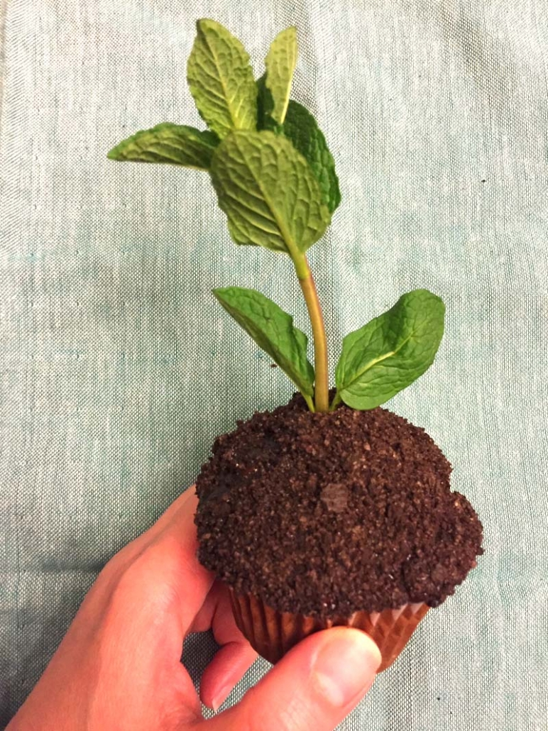 how to make earth day oreo dirt cupcakes