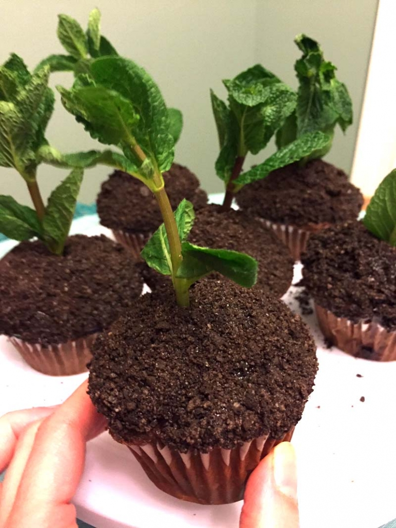 earth day dessert