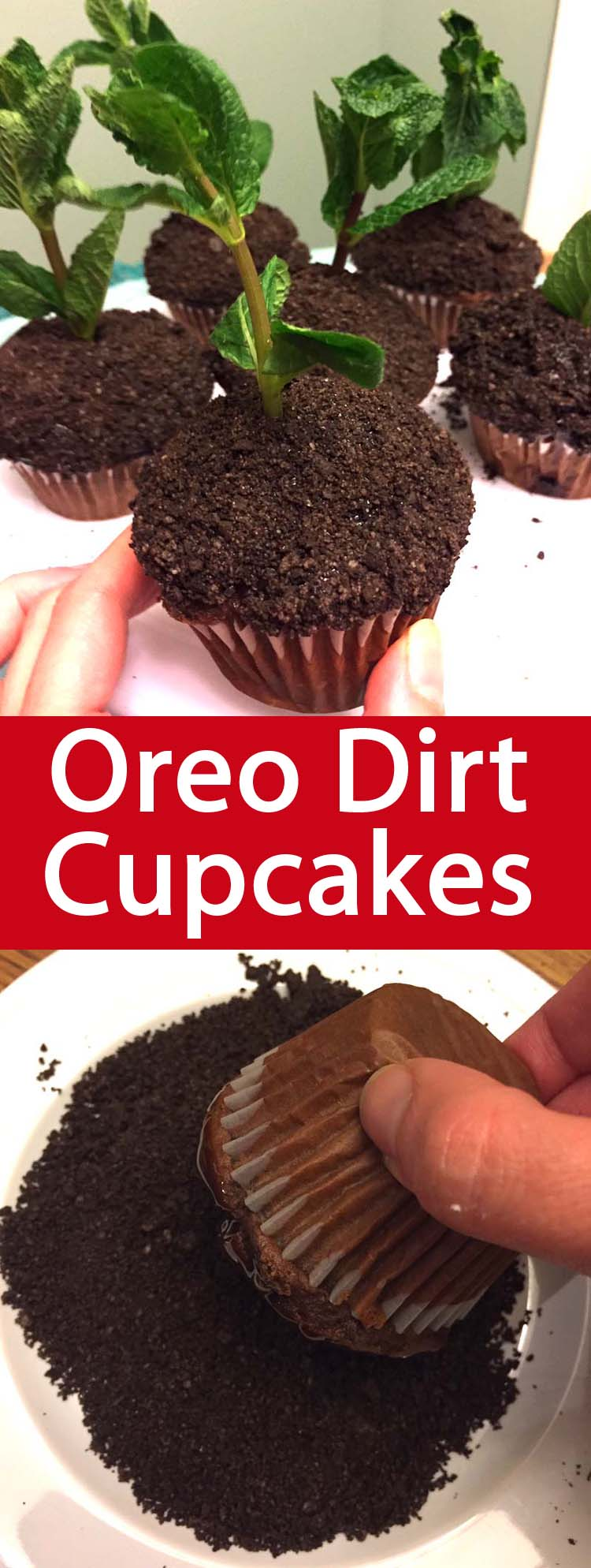 These dirt cupcakes are amazing! Oreo crumbs make perfect \
